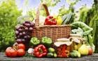 Obst und Gemüse im Juli