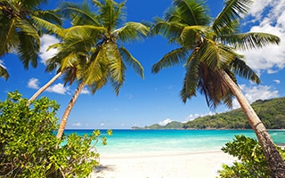 Gesunder Urlaub in den Tropen