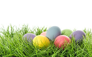 Natürliche Eierfarben – Ostern ohne Chemie