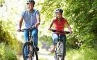 das Herz-Kreislauf-System auf Touren