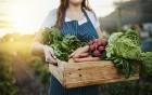 Pro Probiotika bei Antibiotikagabe