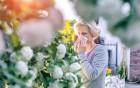 Die Pollenallergie