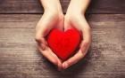 Vitamin K2 - Schutzschild und Jungbrunnen für das Herz