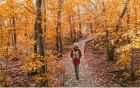 Herbst Depression davonlaufen
