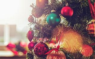 - den Weihnachtsbaum lange grün halten