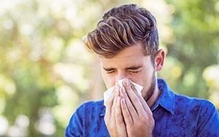 Nase wegen Pollenallergie