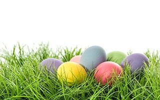Eierfarben – Ostern ohne Chemie