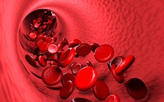 Blutverdünnung: Was gibt es Neues?
