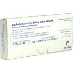 EQUISETUM ARVENSE Silicea cultum D 3 Ampullen