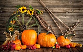 Frische Farben gegen die Herbstdepression