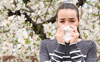 Die gemeinen Pollen - welche machen uns das Leben besonders schwer?